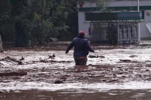Bùn đỏ, thảm họa sinh thái