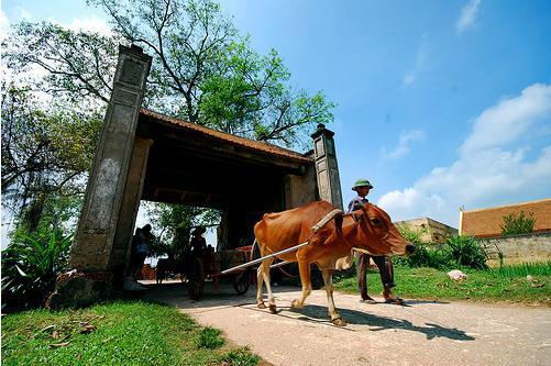 Cổng làng Đường Lâm