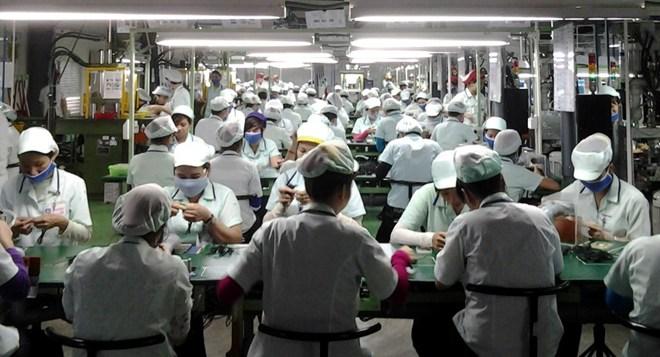 Hàng ngàn CN có bằng đại học đang làm việc tại Cty Poster Đà Nẵng