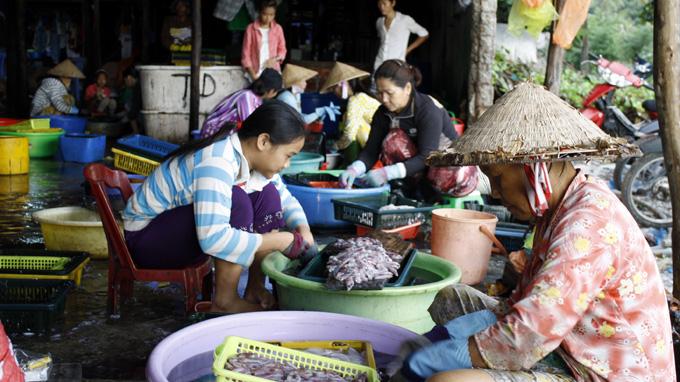 Sơ chế hải sản trên đảo Thổ Chu