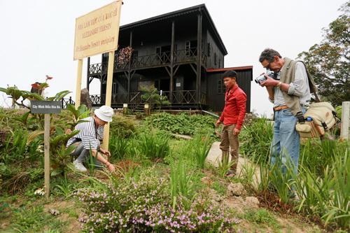 Bà Evelyne Minsen gieo hạt bí trong khu vườn của bác sĩ Yersin
