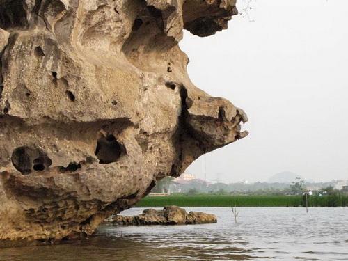 Đá hình mỏ đại bàng - một mỏm đá tự nhiên đặc biệt ở khu du lịch Tam Cốc