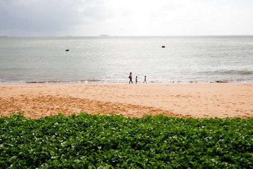 Khung cảnh hữu tình dọc bờ biển đường An Dương Vương kéo dài đến khu du lịch Ghềnh Ráng