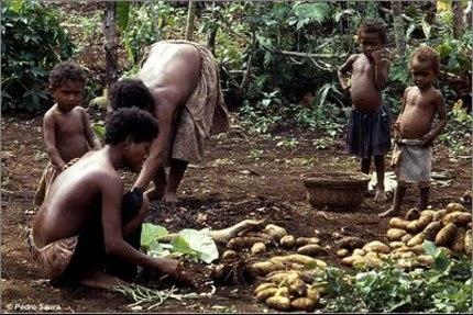 Vào các vụ mùa thu hoạch, trồng khoai, đàn ông không dám ra khỏi nhà, vì sợ phụ nữ cưỡng hiếp. Liệu trong khoai lang ở đất nước này có hoạt chất đặc biệt khiến chị em rất sung?