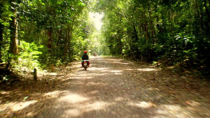 Con đường trải đá dài gần 30km vào khu du lịch Thác Mai nằm trong rừng nguyên sinh Nam Cát Tiên